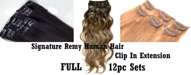Pierre diamond trends 100 pure remy human hair extensions signature premium clip in clip on human hair extensions pmusecretfo Images